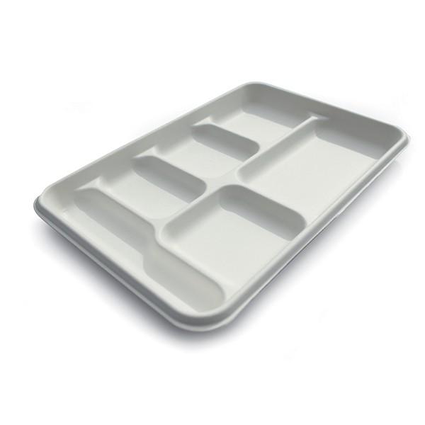 plateau repas en canne à sucre 6 compartiments