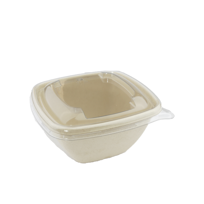 barquette compostable canne a sucre